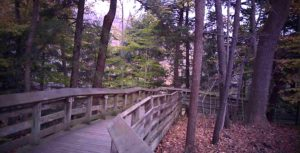 Walking trail at Brandywine Falls